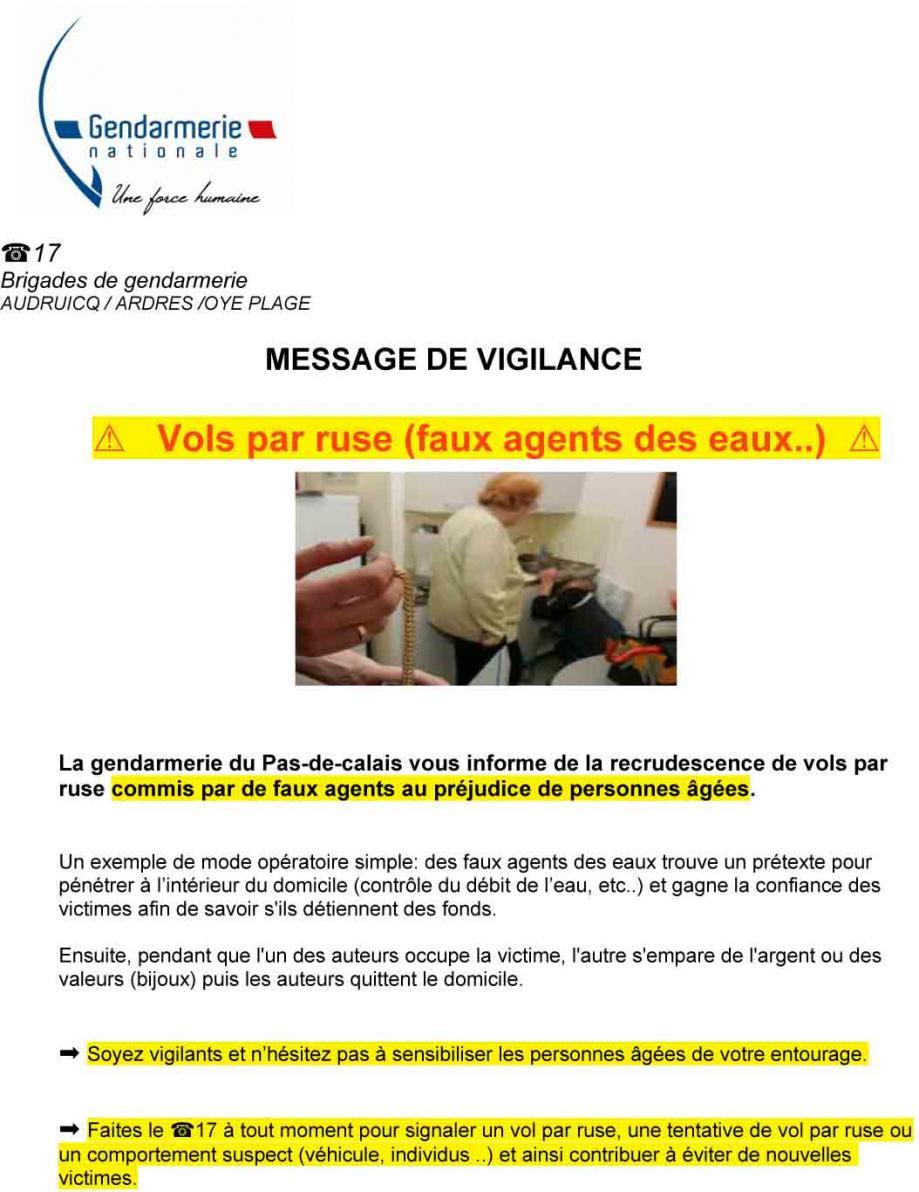 Msg vigilance vol ruse 1